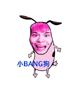 小Bang狗